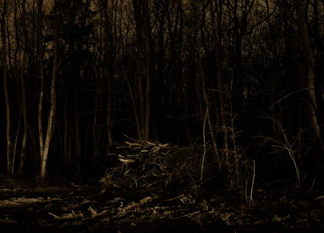 , 'Wood Pile, 2010,' 2011, Francesca Maffeo Gallery