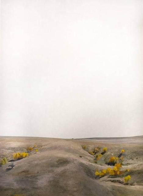 Teo Nguyen, 'Untitled 45', 2019, Burnet Fine Art & Advisory