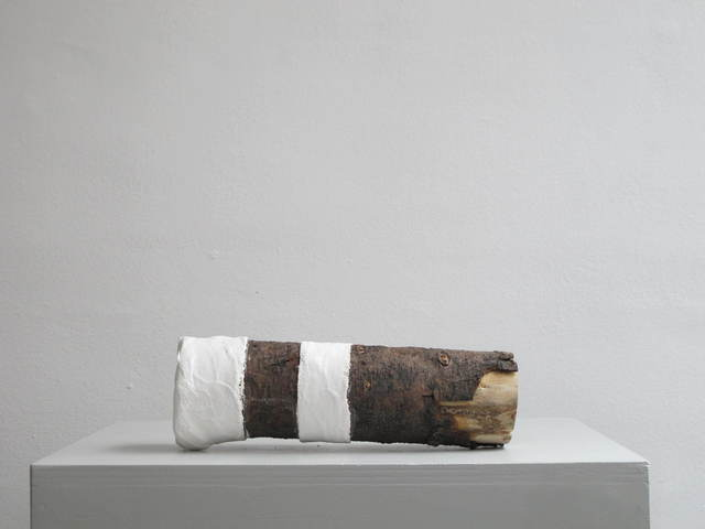 , 'Log_FixingNature 27 B,' 2016, SETAREH GALLERY