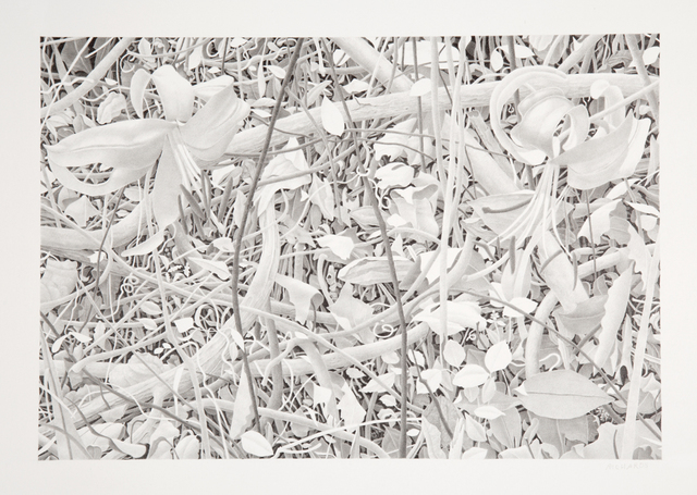 , 'Flowers and Branches,' 2009, Nancy Hoffman Gallery