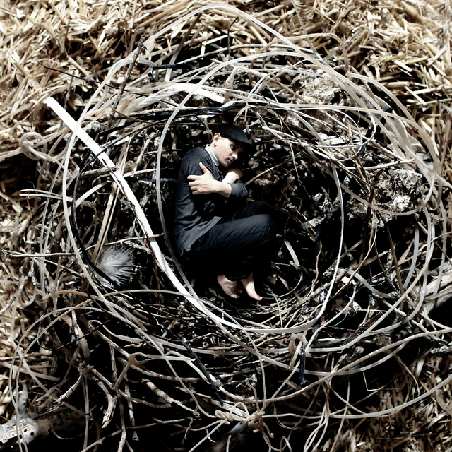 , 'Into The Nest ,' 2014, ACS GALLERY