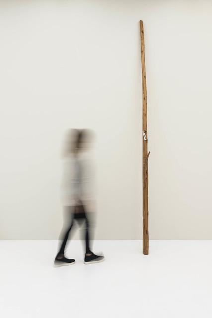 Jimmie Durham, 'Bom Dia', 2010, Bergamin & Gomide