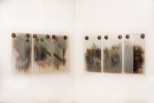 , 'Cosmos (Ghost mirror installation),' 2018, Wexler Gallery