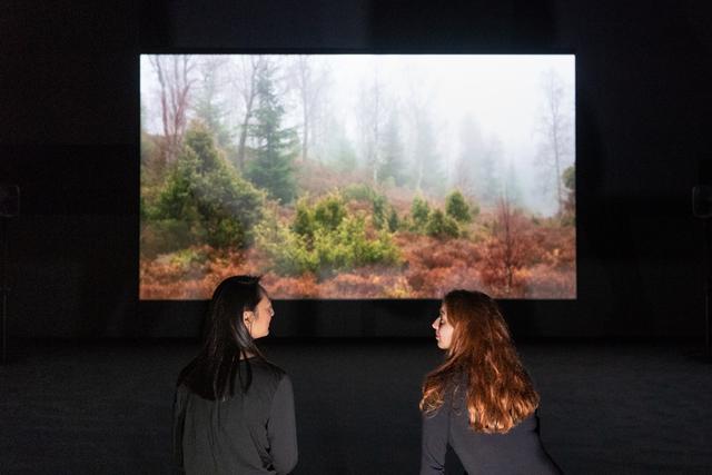 , 'BRIDGIT,' 2016, Tate Britain