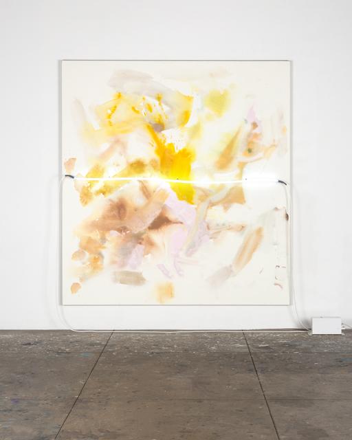 , 'white pickup / wild roses,' 2015, David Kordansky Gallery