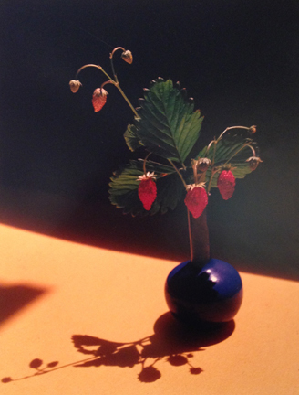, 'Strawberry in Blue,' , Staley-Wise Gallery