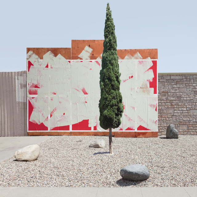 , 'Pine Against painted Background,' 2014, Galerie Richard