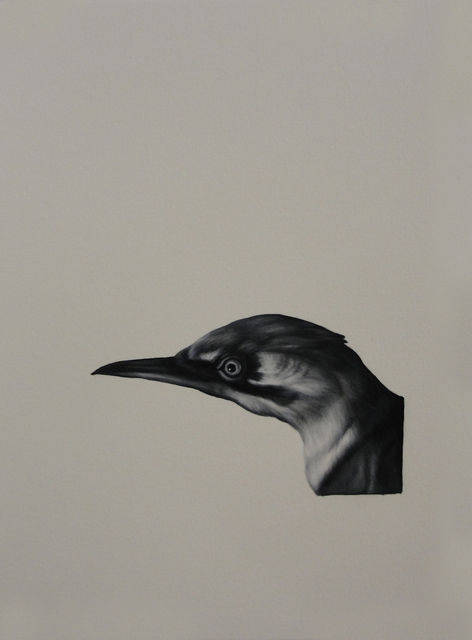 Shelley Reed, 'Bird (after Duranti)', Painting, Visions West Contemporary