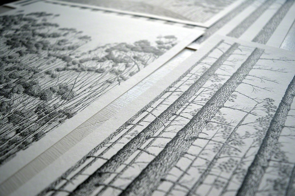 Detail on Michael Amery's use of India Ink on paper.