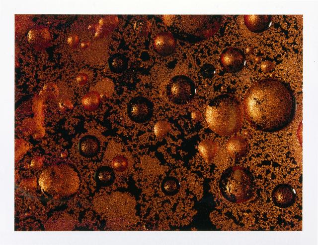 , 'Polaroid #3,' 2013, Collezione Maramotti