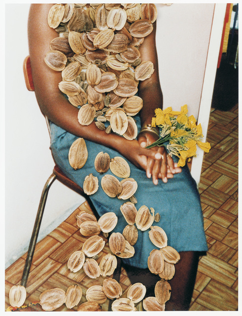 , 'Untitled, from the series 'Hackney Flowers' ,' 2005, Christophe Guye Galerie