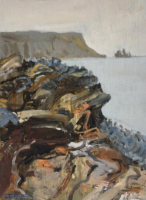 David Alexander, 'SW, Shore, Iceland', 2017, Foster/White Gallery