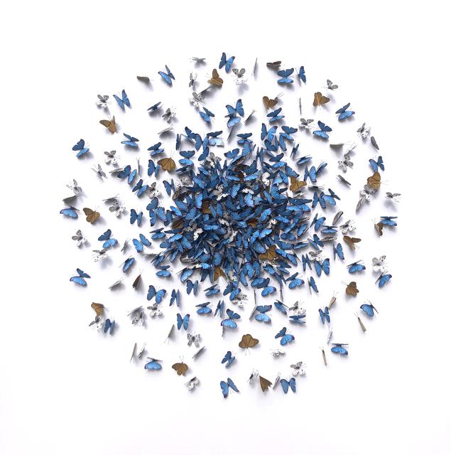 , 'Blue Kaleidoscope,' 2019, M1 Fine Art