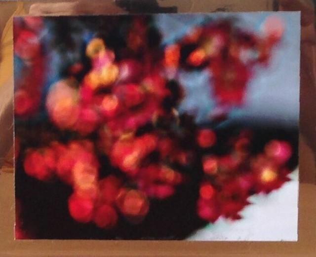 Tuba Köymen, 'Untitled (Floral)', 2012, Ro2 Art
