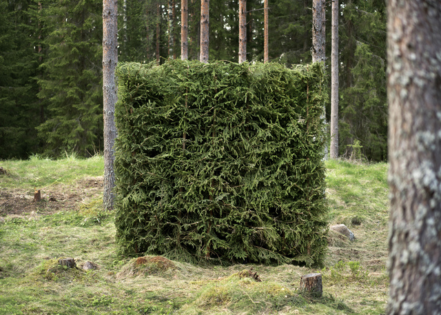 , 'Forest (Green),' 2016, Galerie Anhava