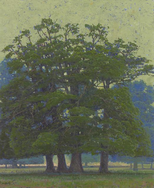 , 'Oak Clump in Rousham Park,' 2017, John Martin Gallery