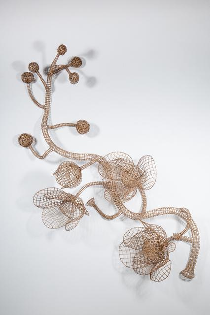 , 'Rang Phnom Flower No. 6,' 2016, Tyler Rollins Fine Art