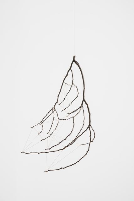 , 'Petricor (rama o pulmón)  [Petricor (branch or lung)],' 2016, Galeria Luisa Strina