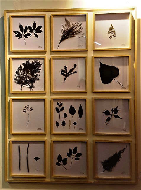 , 'La Naturaleza no se Atrapa, Panel IV,' 2018, ACCS Visual Arts
