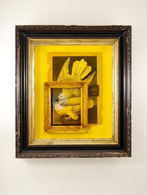 , 'Audubon Dimensionalized,' 2008, Quint Gallery