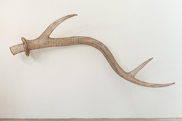 , 'Antler No. 2,' 2015, Tyler Rollins Fine Art
