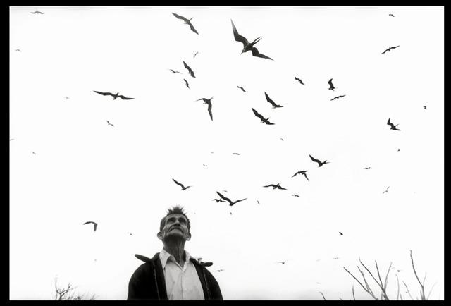 , 'El señor de los pájaros, Nayarit ,' 1984, Etherton Gallery