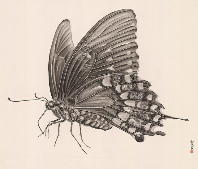 , 'Butterfly 2,' 2018, Alisan Fine Arts