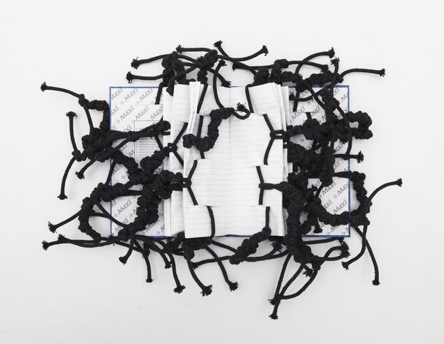 , 'Cotton Rope No. 2,' 2012, Gallery Isabelle van den Eynde
