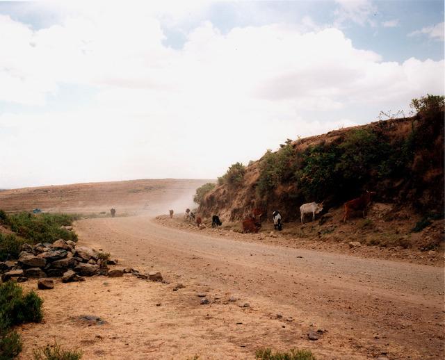 , 'Ethiopian Landscape IV,' 2002, Anthony Reynolds Gallery