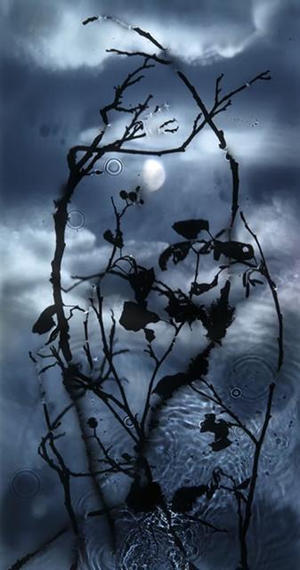 , 'Gibbous Moon,' 2010, Danziger Gallery