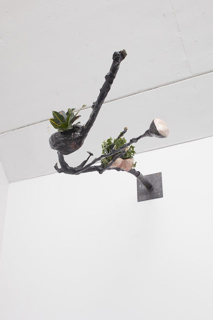 , 'Mouth Branch,' 2015, carlier | gebauer