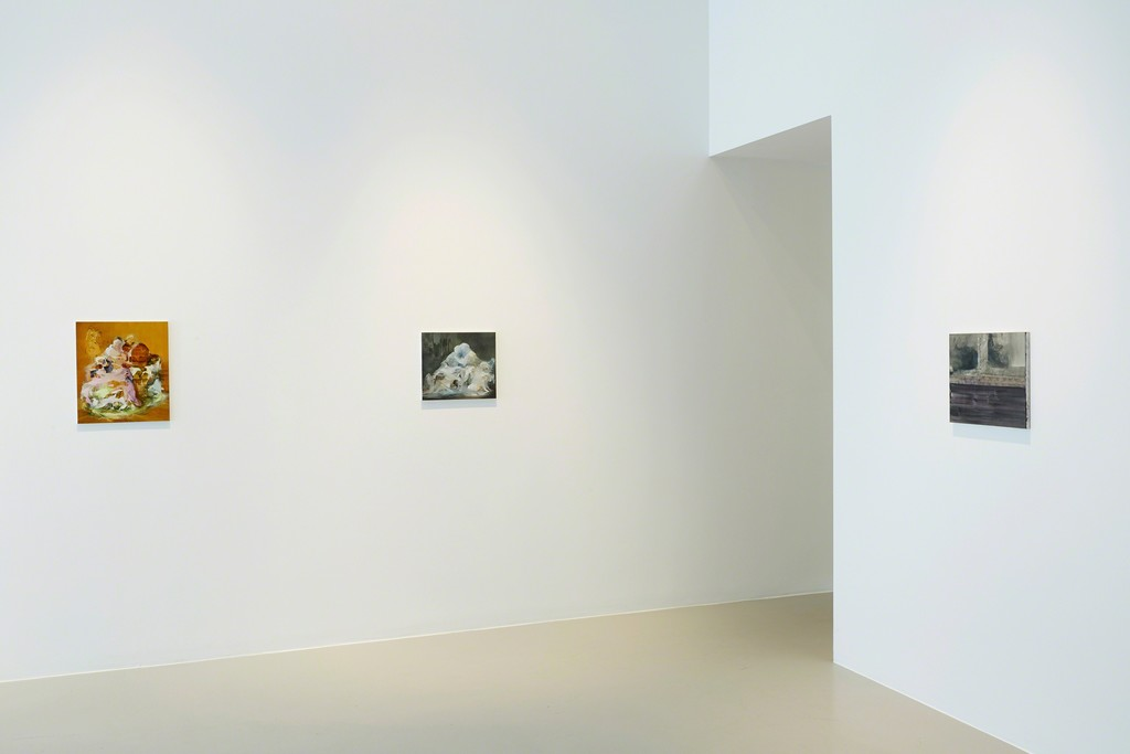 Form Regained - Alexandra Navratil, Erin Shirreff & Lara Viana, 30 April - 30 May 2015 (exhibition view)