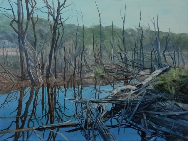 , 'Savage Pond I Study,' 2018, Nanda\Hobbs