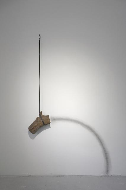 Rosana Antolí, 'Coreografía d'un tronc ', 2015, The Ryder