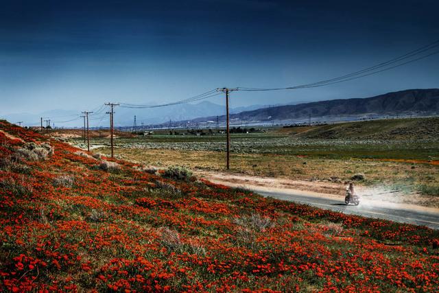 David Drebin, 'Magic Highway', 2017, Photography, Chromogenic Print, CHROMA GALLERY