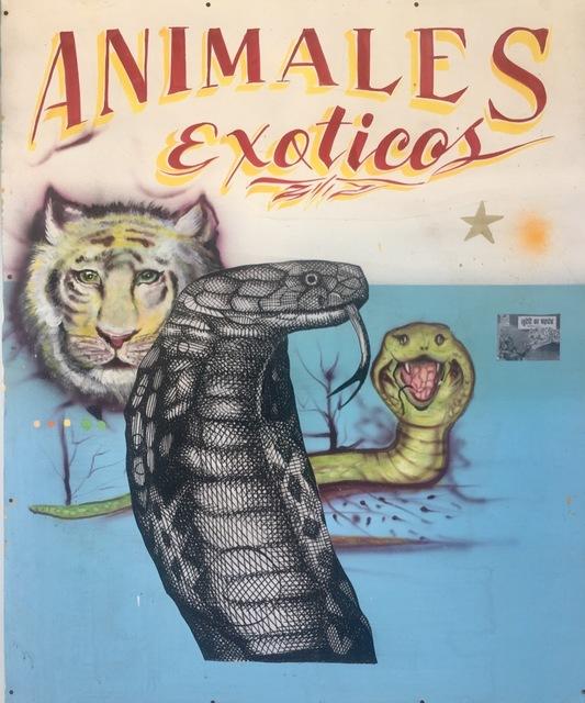 Armando Lerma, 'Animales Exitcos  ', 2018, Painting, Mixed media, Melissa Morgan Fine Art