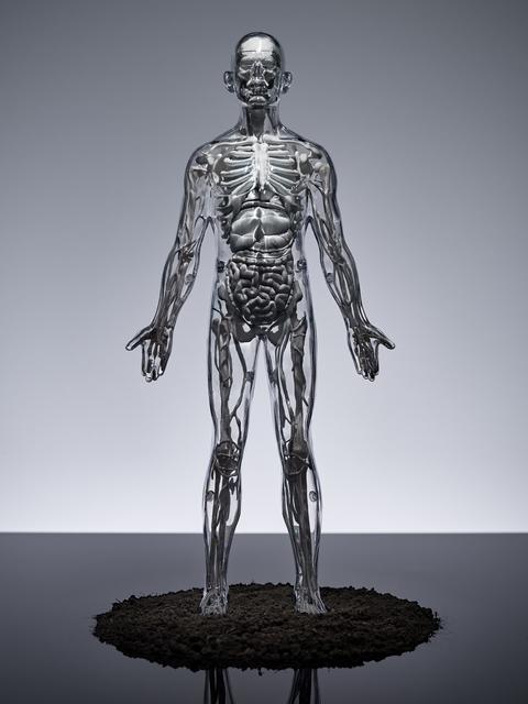 , 'Human,' 2015, Ricardo Reyes