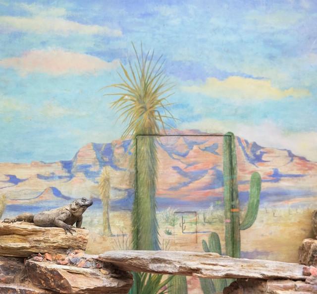, 'Reptile and Cactus,' 2015, Galerie Dumonteil
