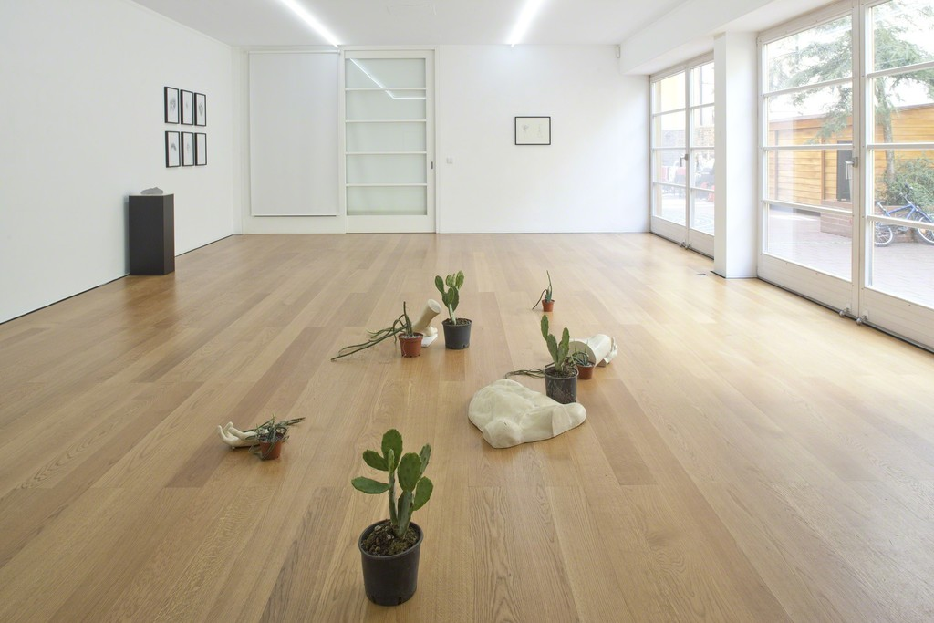 Installation view Alex Mirutziu at Galerie Rüdiger Schöttle, 2016.