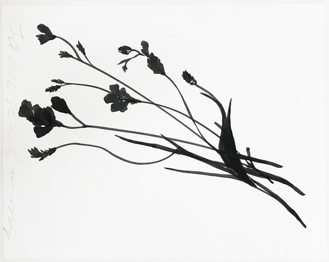 Donald Sultan, 'Freesia June 26 2018', 2018, Serge Sorokko Gallery