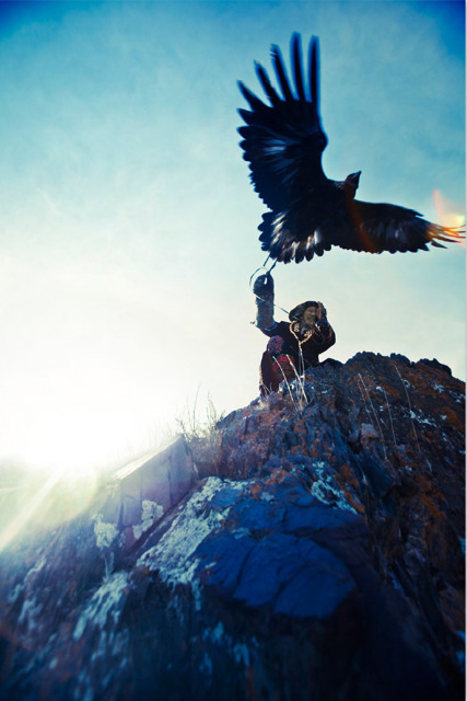 , 'Eagle Hunter 8,' , Jackson Fine Art