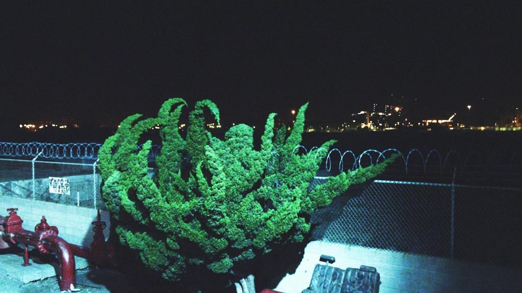 Nightlife, (film still) 2015