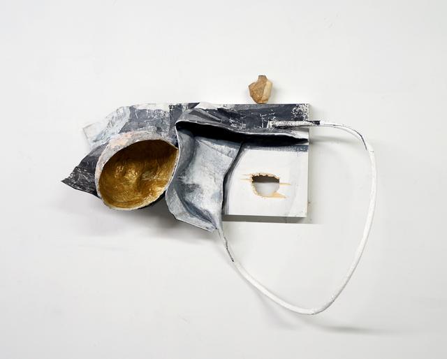 , 'Echoed Rings,' 2017, Rhona Hoffman Gallery