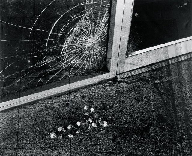 , 'Spiderweb,' 2002, Javier Lopez & Fer Frances