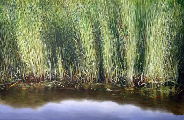 , 'Everglades IV,' 2011, Rosenbaum Contemporary