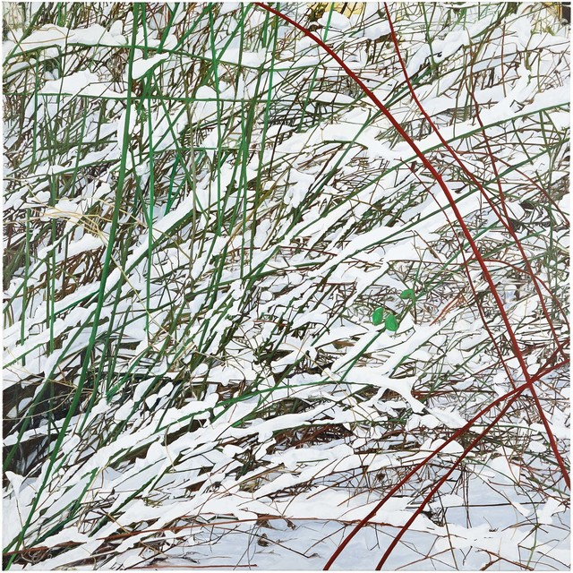 , 'Red Bush,' 2014, Locks Gallery