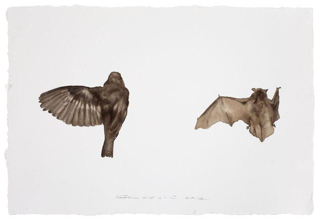 , 'Bird No. 10 鸟10,' 2012, Chambers Fine Art