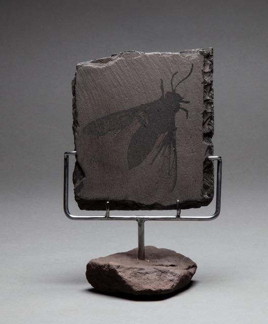 Bill Westheimer, 'Anthropocene 4 - Bee', 2019, Imlay Gallery