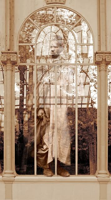 , 'Sin título III, del proyecto Tropologías III (del Parque del Retiro),' 2014, Ángeles Baños