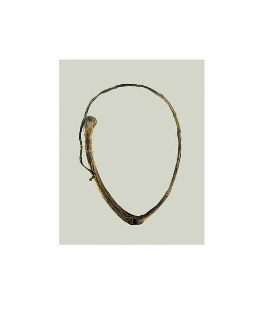 , 'Twig, from the Elton John AIDS Foundation Portfolio ,' 2011, Jackson Fine Art